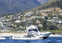 Magnum 32 Fishing Boat (1)