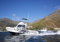 Magnum_32_fishing_boat (9)