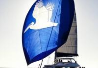 Open Ocean 650 Sailing Catamaran (13).jpg