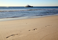 Open Ocean 800 Expedition Catamaran (29)