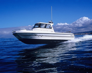 Magnum 32 Power Catamaran Walkaround Model