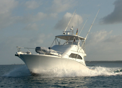 Two Oceans 48 Sport Fisher (3)