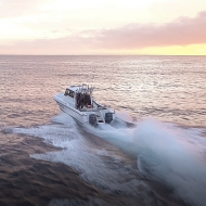 Video: Magnum 32 Walkaround Power Catamaran launch in Plettenberg Bay