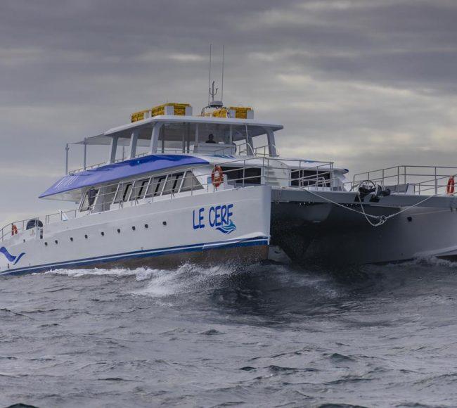Two Oceans 110 Day Charter Catamaran