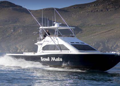 Magnum 44 Power Catamaran