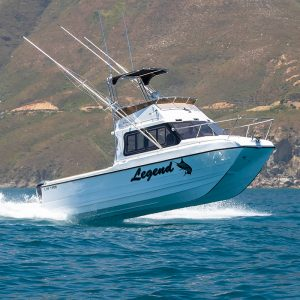 Magnum 32 Power Catamaran Full Cabin Sportfisher Model