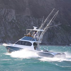 Magnum 36 Power Catamaran Walkaround Model with o doors