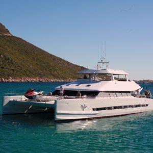 Two Oceans 800E Power Catamaran