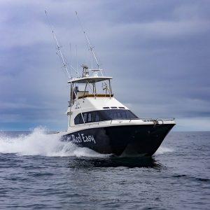 Magnum 46 Power Catamaran Walkaround Model