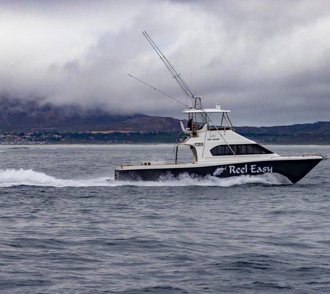 Magnum 46 Power Catamaran Walkaround Model By Two Oceans Marine Manufacturing