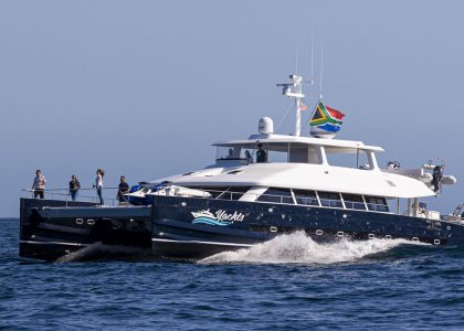 Two Oceans 850E Power Catamaran